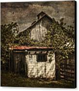 Barn In Morning Light Canvas Print