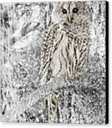 Barred Owl Snowy Day In The Forest Canvas Print