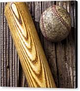 Baseball Bat And Ball Canvas Print by Garry Gay
