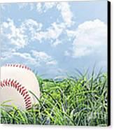 Baseball In Grass Canvas Print by Stephanie Frey
