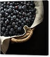 Basket Full Fresh Picked Blueberries Canvas Print by Edward Fielding