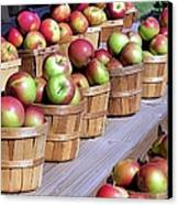 Baskets Of Apples Canvas Print by Janice Drew