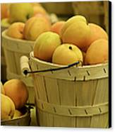 Baskets Of Apricots Squared Canvas Print by Julie Palencia