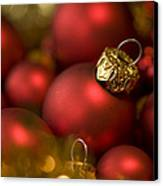 Baubles Canvas Print by Anne Gilbert