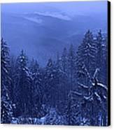 Bavarian Forest In Winter Canvas Print by Ulrich Kunst And Bettina Scheidulin