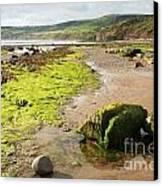 Beach At Robin Hoods Bay Canvas Print by Deborah Benbrook