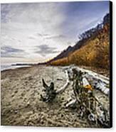 Beach At Scarborough Bluffs Canvas Print by Elena Elisseeva