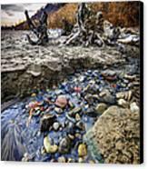 Beach Brook At Scarborough Bluffs Canvas Print by Elena Elisseeva