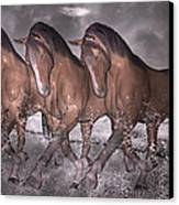 Beach Horse Trio Night March Canvas Print by Betsy Knapp