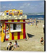 Beach Hut Canvas Print by David Davies