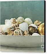 Beach In A Bowl Canvas Print