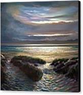 Beach Paths Canvas Print by Robert Shaw
