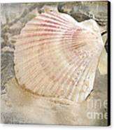Beached Canvas Print by Betty LaRue