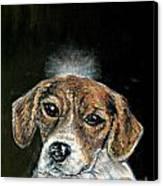 Beagle Angel Canvas Print by Jay  Schmetz