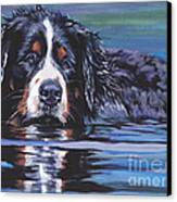 Beautiful Berner Canvas Print