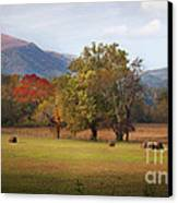 Beautiful Cades Cove Canvas Print by Lena Auxier