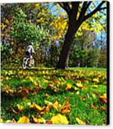 Beautiful Landscape Canvas Print by Boon Mee
