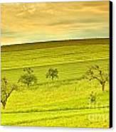 Beautiful Landscape In The Spring Canvas Print by Regina Koch