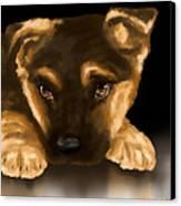 Beautiful Puppy Canvas Print