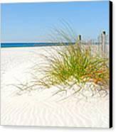Beautiful Sand Dune Canvas Print