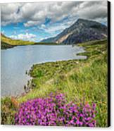 Beautiful Wales Canvas Print