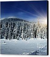 Beautiful Winter Landscape With Snow Covered Trees Canvas Print by Boon Mee