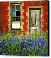 Beauty And The Door - Texas Bluebonnets Wildflowers Landscape Door Flowers Canvas Print