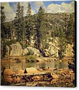 Beauty You Find Along The Way Canvas Print