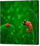 Beetle Chameleon Canvas Print by Gianfranco Weiss