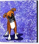 Befuddled Boxer Canvas Print