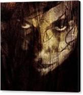 Behind The Veil Canvas Print by Gun Legler