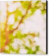 Beneath A Tree  14 5194  Diptych  Set 2 Of 2 Canvas Print by Ulrich Schade