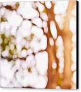 Beneath A Tree 14 5286 Triptych Set 1 Of 3 Canvas Print by Ulrich Schade