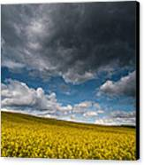Beneath The Gloomy Sky Canvas Print