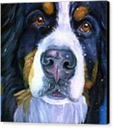 Bernese Mountain Dog In Snowfall Canvas Print by Lyn Cook