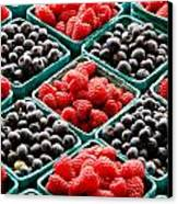 Berry Berry Nice Canvas Print by Peter Tellone