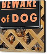 Beware Of Dog Canvas Print by John Dauer