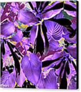 Beware The Midnight Garden Canvas Print