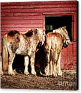 Big Horses Canvas Print by Olivier Le Queinec