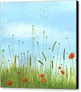 Big Orange Poppies Canvas Print by Cecilia Brendel