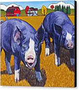 Big Pigs Canvas Print by Stacey Neumiller