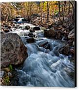 Big Pine Creek Canvas Print by Cat Connor