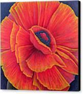 Big Poppy Canvas Print by Ruth Addinall