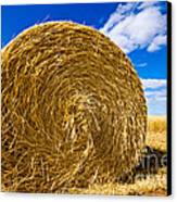 Big Straw Bales Canvas Print