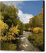 Big Thompson River 2 Canvas Print