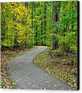 Bike Path Canvas Print by Frozen in Time Fine Art Photography