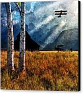 Birch Trees And Biplanes  Canvas Print by Bob Orsillo
