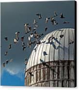 Bird - Birds Canvas Print by Mike Savad