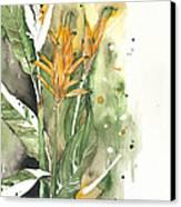 Bird Of Paradise 08 Elena Yakubovich  Canvas Print