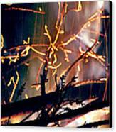 Birthed From Fire Canvas Print by Rory Sagner